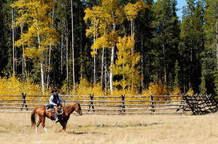 Tahoe Donner Lifestyle Equestrian